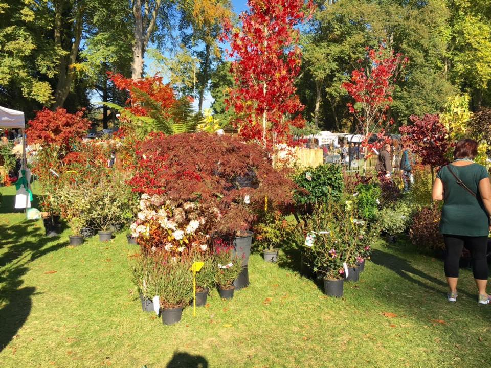 Journées des Plantes de Chantilly Octobre 2016