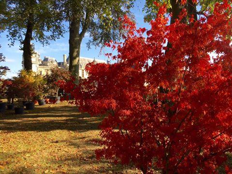 Sortir à Chantilly cet automne